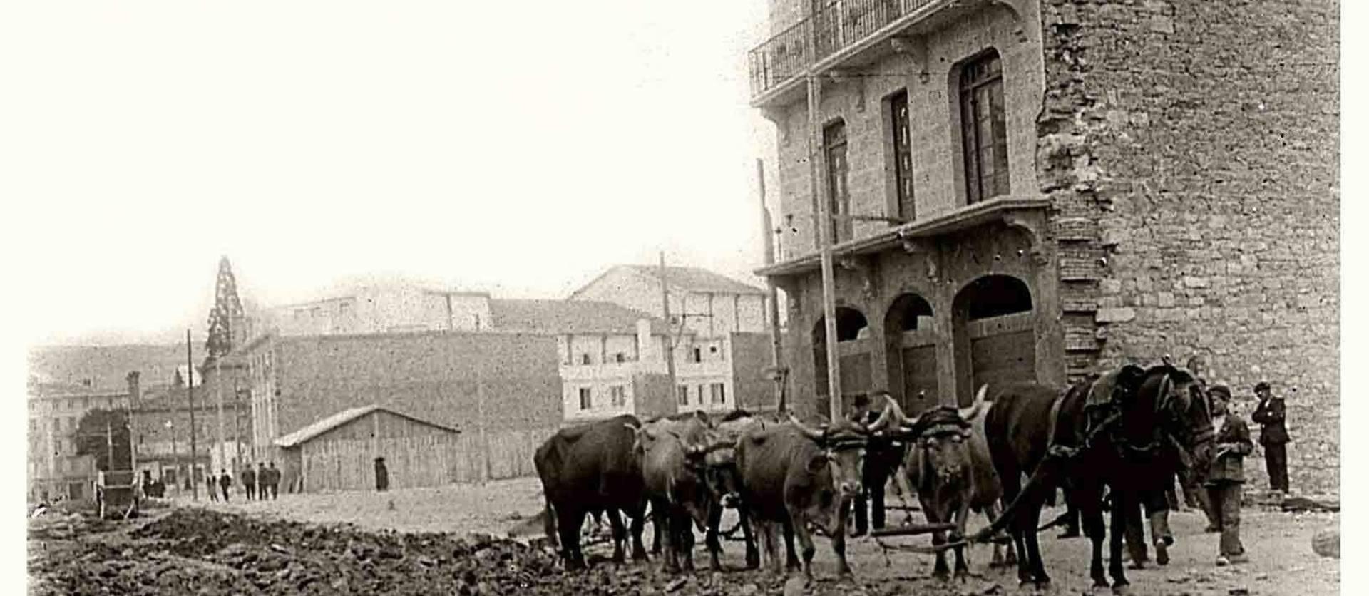 Bueyes y caballerías trabajando en las obras de urbanización de la avenida de San Ignacio, en junio de 1923, a la altura del actual hotel Yoldi. A la izquierda, el Coliseo Olimpia, recién terminado, y detrás el fielato de arbitrios.