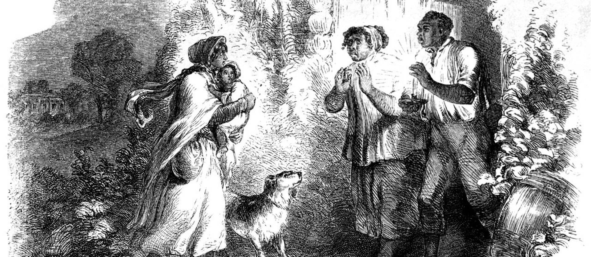 El debate sobre la esclavitud hiere de muerte al Partido Whig (1852)