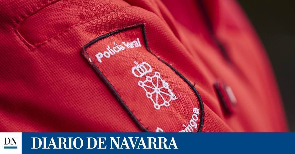 Cuatro detenidos por delitos en el ámbito familiar en la última semana en Navarra